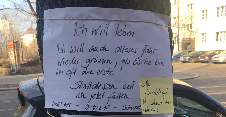 In der Stahlheimer Straße formiert sich Widerstand gegen die Bezirkspläne (Foto: Constanze Nauhaus)